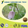 Animal Medicine Ingredients Radix Pulsatillae Chinensis Extract Curing Animal Intestines Problems