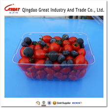 Disposable Clear Plastic Food And Fruit Packaging Tray 1000 Gram