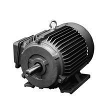 75hp electric motor 75hp brushless motor induction motor price 55kw Y250M-2, 55KW, 380V/400V, 3000r/min.