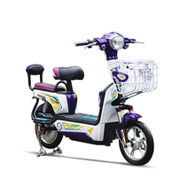 Chinese Fashion Two Rounds Adult Electric Motorcycle