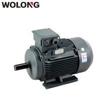 Wolong 250kw AC Motor Three Phase Induction Electric Motor 4P for air cooler