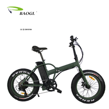 Made In China High Performance BAOGL 300w electric folding bike