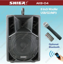 SHIER 8 Inch class D amplifier with Tone control AK8-04