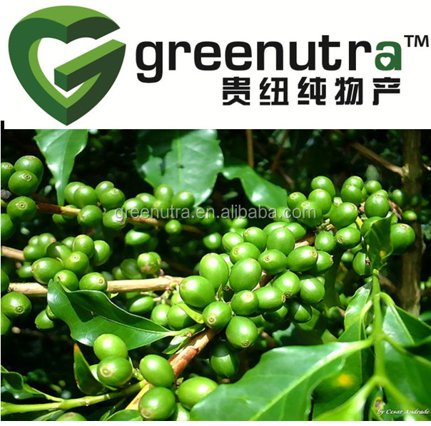 High Quality 100% Natural Green Coffe Bean Extract