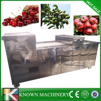 High efficient apricot pitting machine,apricot pitter machine with CE