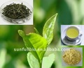 Instant GreenTea Powder