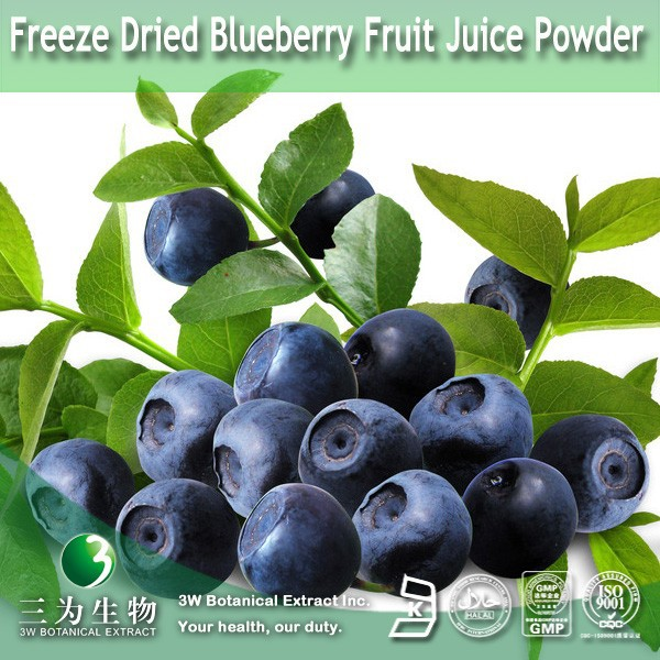 100% Natural Freeze Dried Blueberry Fruit Juice Powder