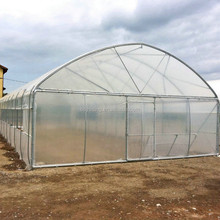 Agricultural tomato and potato tunnel greenhouse