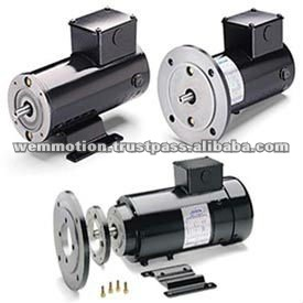 Leeson Permanent Magnet DC Motor