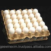 Chicken Egg Price In India