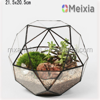 MX130037 Indoor plant glass terrarium globe for home decor