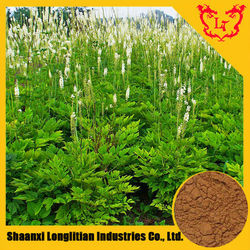 Best Price Powdered Black Cohosh Extract / Triterpene Glycosides 2.5% 5% 8% (HPLC)