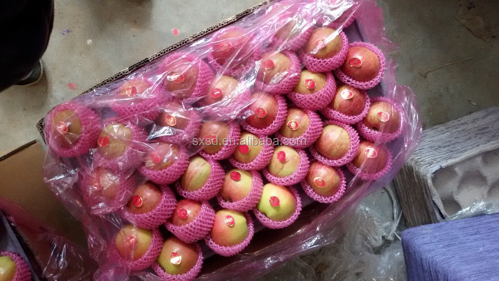 Supply cheapest Chinese China fresh 198 gala /qinguan apple