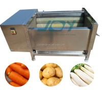 Sweet Potato/ Carrot washing and peeling machine