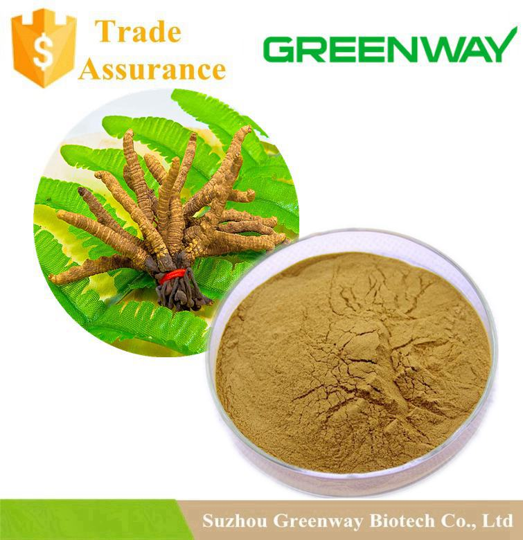 Wholesales Cordyceps P.E. Powder 73-03-0