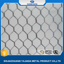Hexagonal Wire Mesh/ Chicken wire mesh / hexagonal wire netting (Factory))