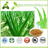Best Aloe Vera Cream Animate Aloe Vera & Vitamin E Facial Oil