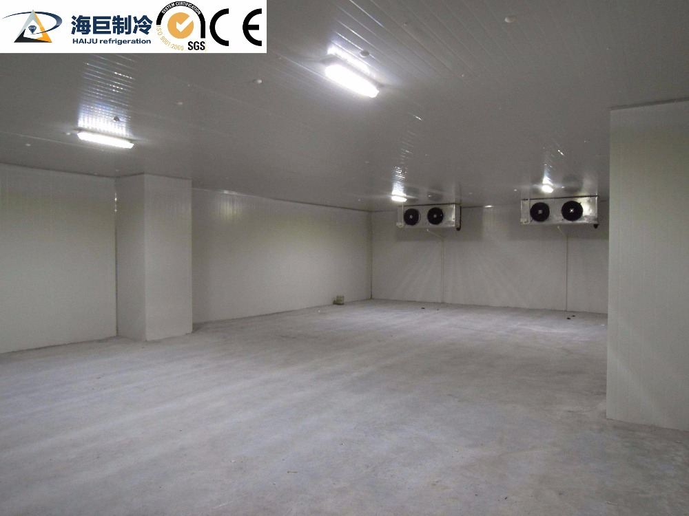 factory direct sale cold room panel price|cold room for fish and meat
