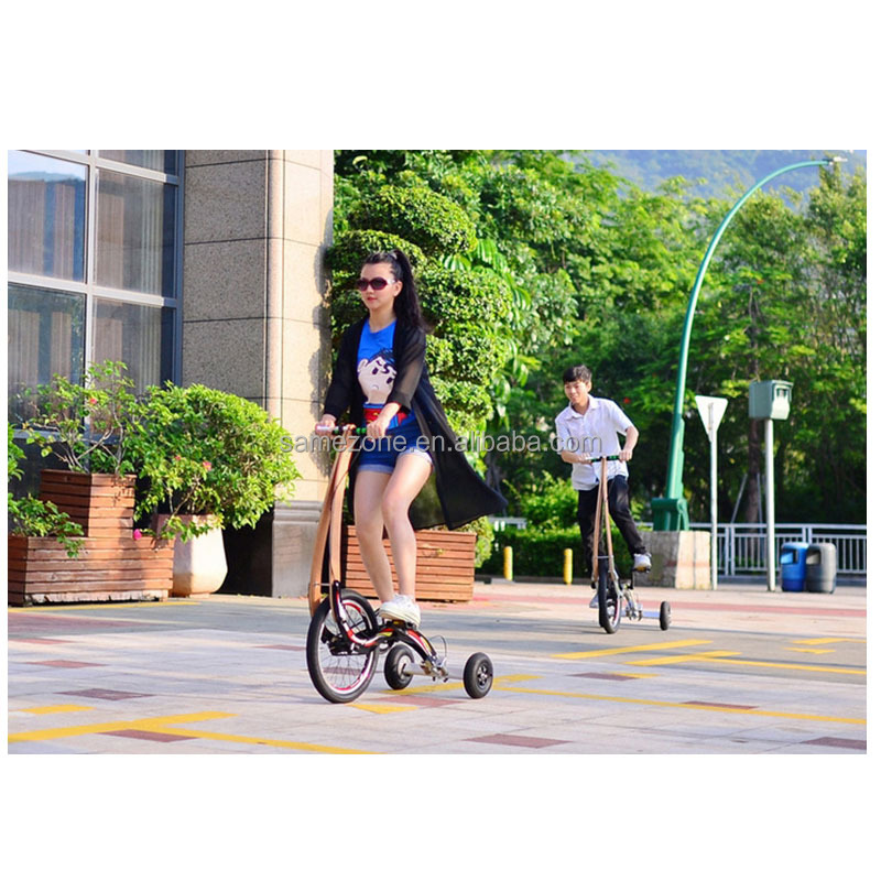 Dynamic Bike Bodybuilding Flywheels Magnetic spinning bike/3 wheel tricycle hoverboard