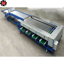 Fruit and vegetable sorter / Apple washing sorting machine /tomato grading machine for sale