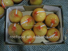 Chinese Fresh Citrus Fruit Honey Pomelo Export to Saudi Arabia