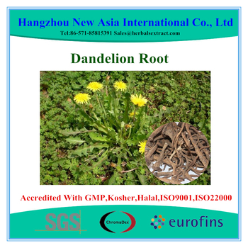 100% Natural Chinese Herb Medicine Dried Dandelion Root and Leaves Slices and Cut