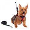 Dog Harness with Leash