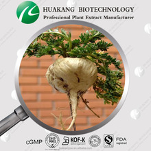 High Quality Maca Root Powder Extract Manufacturer 60% Macamide, 60% macaenes, 4:1, 5:1, 10:1