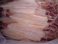 export dried squid whole round