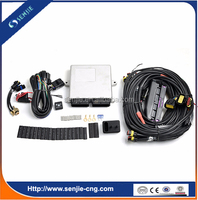 cng lpg conversion kit/cng lpg ecu for car ecu kits