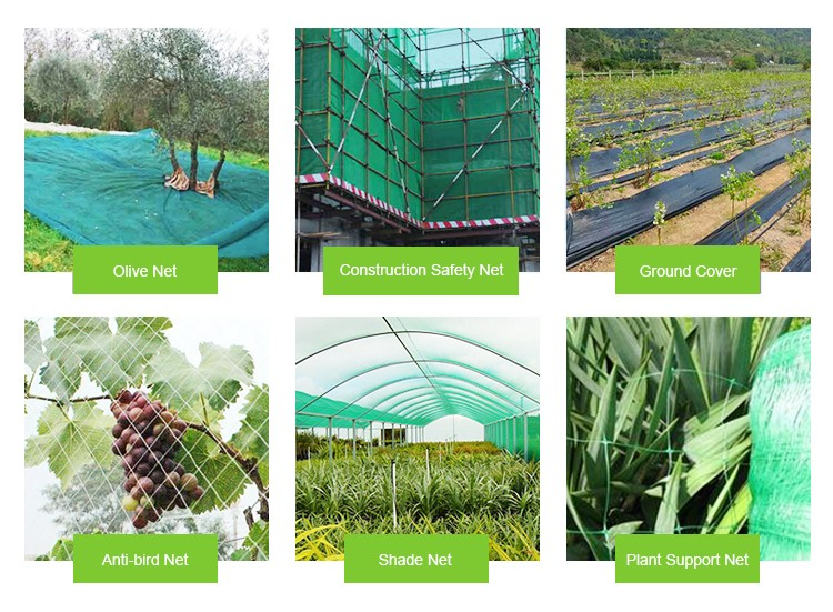 HDPE insect proof net / greenhouse plastic anti insect net