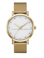 Stainless steel Mesh band watch with interchangbeable band