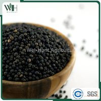 Vietnam spicy aromatic herb - black pepper seed 500gl