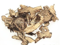 GMP/ISO/KOSHER manufacturer Black cohosh root powder