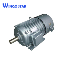 variable adjusted speed electric motor