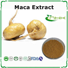 hot sale man enhancement maca extract powder