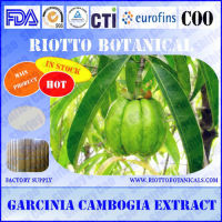Factory supply slimming garcinia cambogia plant 50% (CAS 6205-14-7)