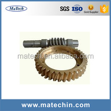 Customized Machining Stainless Steel Micro Brass Worm Gear Shaft