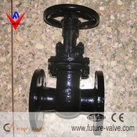 Double Disc Russia Standard Cast Iron Gate Valve