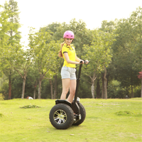 Self balancing electric scooter motor