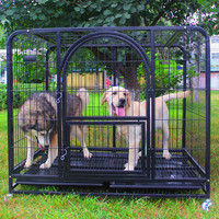 new design large colored pet products cage durable doors dog crate
