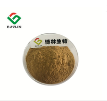 Herbal Extract Natural Dried Okra Seed Powder