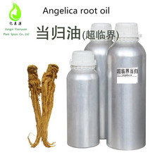 Chinese Medicine oil Herbel Extract Female Ginseng Angelica Root oil with best price
