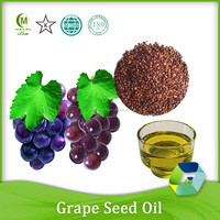 Cold Pressed Grape Seed Oil 100% Pure Bulk Grape seed Oil