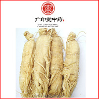 China Factory Wild Bulk American Ginseng