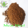 High Quality Meat Meal 55% Pure Mutton