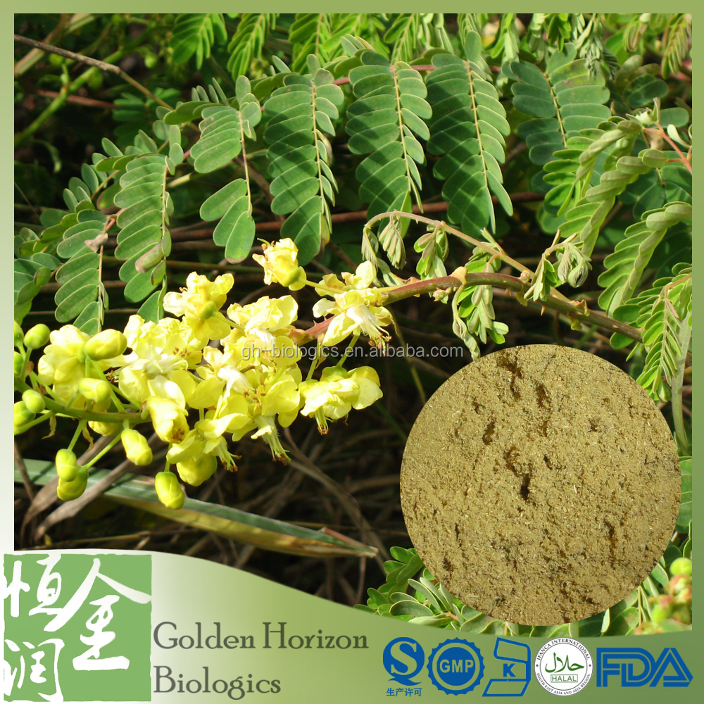 Competitive Price Organic Certified Cassia Nomame P.E.