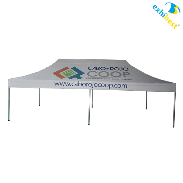10x10 Canopy Tent/Trade Show Canopy/Outdoor Canopy
