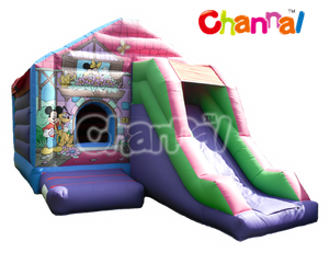 Mickey Mouse Bouncy Castle, minnie bouncer