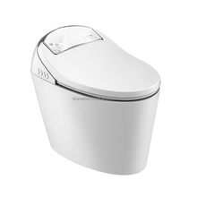 Automatic Self-cleaning Electric Intelligent One Piece Toilet